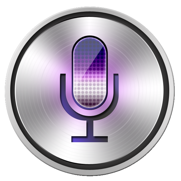 Voice report